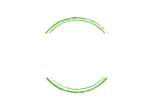 Not A Trace